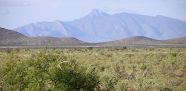 view of cooks peak, luna county land for sale by owner