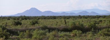 Luna County land for sale near the Florida Mountains
